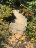Взгляд 006 леса Greenway Стоковые Фотографии RF