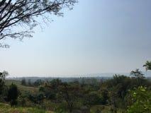 Взгляд 013 леса Greenway Стоковая Фотография