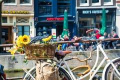 Взгляд лета велосипеда с цветками на мосте канала в Амстердаме Стоковое Фото