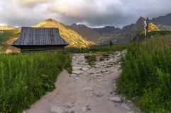 Взгляд лета долины Gasienicowa Горы Tatra Польша стоковые фотографии rf