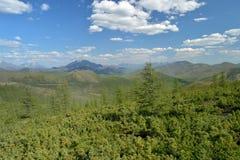"""Взгляд лета перевала Olchan Oymyakon, Yakutia Шоссе """"KolymaÂ"""" P504 Тhe федеральное стоковые изображения"""
