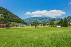 Взгляд летнего времени в швейцарском кантоне Schwyz Стоковая Фотография RF