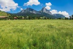 Взгляд летнего времени в швейцарском кантоне Schwyz Стоковое фото RF