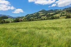 Взгляд летнего времени в швейцарском кантоне Schwyz Стоковое Изображение RF