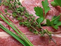 Взгляд макроса свежих трав на сырцовом carvery говядины стоковое изображение rf