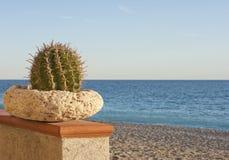 Взгляд моря Стоковое Изображение RF