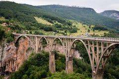 Взгляд моста Djurdjevic над рекой Тары стоковые изображения rf