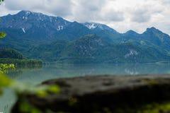 Взгляд над древесиной к озеру и горе стоковые изображения rf