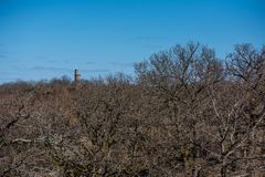 Взгляд над лесом части в предыдущей весне Каменная башня в расстоянии стоковое фото