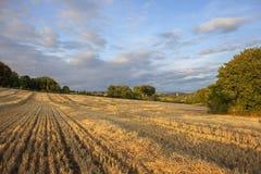 Взгляд над сельскохозяйственными угодьями к церков на откалывать Campden, Cotswolds, Gloucestershire, Англию стоковое фото