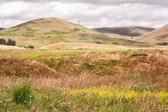 Взгляд над холмами в Глене Девоне Стоковые Изображения