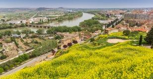 Взгляд над Эбро в Tudela стоковые фотографии rf