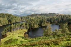 Взгляд над Hows Tarn в английском заречье озера Стоковые Изображения RF
