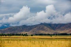 взгляд национального парка гор kazakhstan ile alatau красивейший стоковые изображения rf