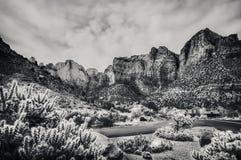 Взгляд национального парка Сиона в черно-белом стоковое фото