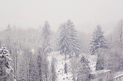 Взгляд на кладбище города в тяжелом идя снег дне - изображении стоковые фото