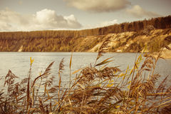 Взгляд на озере Стоковое Изображение RF