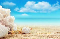 Взгляд на песчаном пляже Стоковые Фото