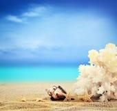 Взгляд на песчаном пляже Стоковые Изображения RF