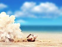 Взгляд на песчаном пляже Стоковое Изображение