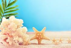 Взгляд на песчаном пляже Стоковая Фотография RF