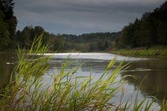 Взгляд на реке и лесах в лете все еще выравниваясь с светлым отражением в воде Стоковое Изображение