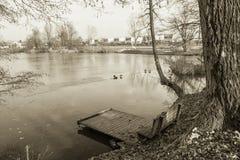 Взгляд на стенде и footbridge в зиме приправляют в черно-белом sepia, Любляне, Словении Стоковое Изображение