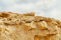 Взгляд на утесе в одичалой пустыне в Израиле стоковое фото rf
