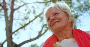 Взгляд низкого угла активной кавказской старшей женщины выполняя йогу в саде дома престарелых 4k сток-видео