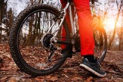 Взгляд низкого угла горного велосипеда катания велосипедиста на следе на восходе солнца в лесе Стоковое Фото