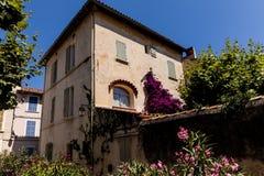взгляд низкого угла красивого традиционного дома с зеленой растительностью и зацветая цветками на солнечном дне стоковые изображения