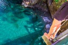 Взгляд Новой Зеландии Стоковое Изображение RF