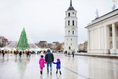 Взгляд ночи рождественской елки в Вильнюсе, Литве Праздновать праздники Xmas в балтийских странах Стоковое Изображение RF