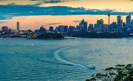 Взгляд ночи Сиднея стоковое фото