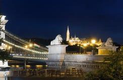 взгляд ночи budapest моста цепной Стоковая Фотография