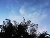 взгляд 3 облаков с небесами Стоковая Фотография RF