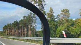 Взгляд обочины от сиденья пассажира автомобиля Персона смотря в зеркале взгляда со стороны сток-видео