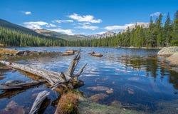 Взгляд озера зяблик и скалистых гор в предпосылке стоковые изображения