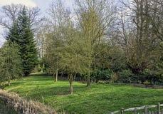 Взгляд озера и окрестности восьмиугольник в Stowe, Buckinghamshire, Великобритании стоковая фотография rf