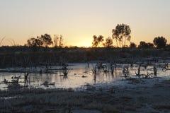 Взгляд озера соли на заходе солнца стоковое изображение rf