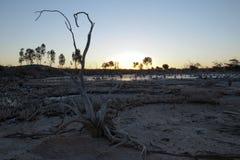Взгляд озера соли на заходе солнца стоковые фотографии rf