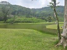 Взгляд озера стоковые изображения
