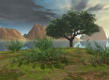 взгляд озера стоковое фото rf