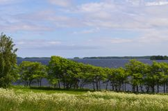 Взгляд озера Karelia России Онег стоковая фотография