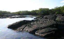 взгляд океана эквадора Стоковые Изображения