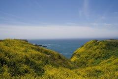 взгляд океана Стоковые Фотографии RF