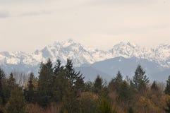 Взгляд олимпийских горной цепи и Mt Констанция от зоны Lofall стоковые изображения rf
