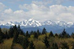 Взгляд олимпийских горной цепи и Mt Констанция от зоны Lofall стоковое изображение rf