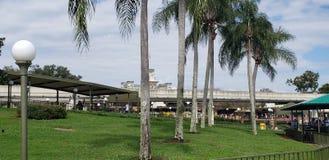 Взгляд Орландо Флориды королевства Дисней волшебный от пристани стоковое изображение