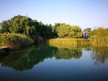 Взгляд осени в разбивочном парке Стоковое Изображение